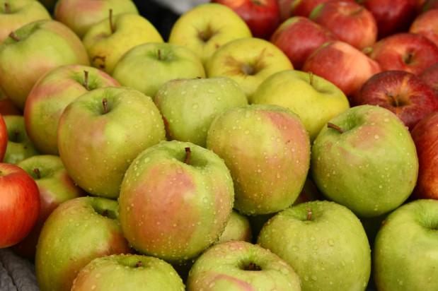 Tajwan dużą szansą dla polskich jabłek