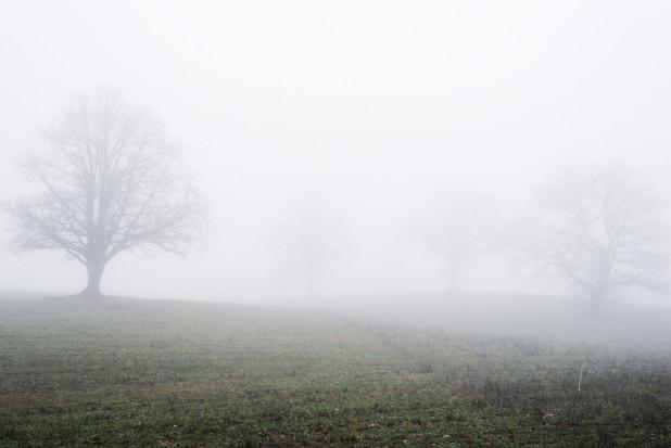 IMGW: gęste mgły w 6 województwach