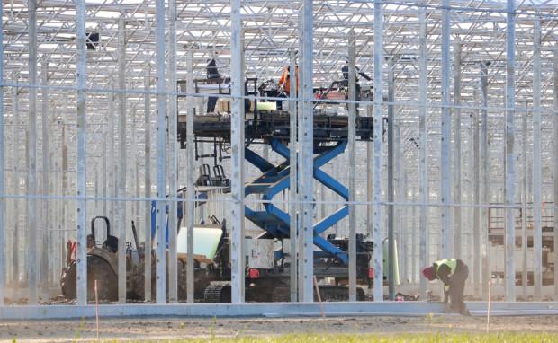 Gmina Kozienice: Trwają intensywne prace nad budową szklarni w Ryczywole