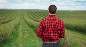 Powstanie uzupełniające wsparcie dochodów dla młodych rolników