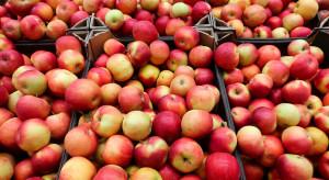 Rosja przedłuża zerowe cła na import owoców i warzyw z Mołdawii