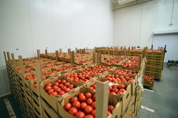 Specjalne oznakowanie opakowań owoców i warzyw – informacja dla eksporterów