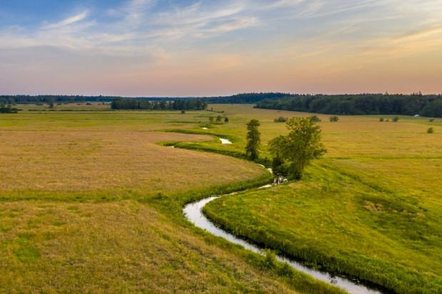 Natura 2000: 196 rolników wystąpiło o wsparcie do ARiMR