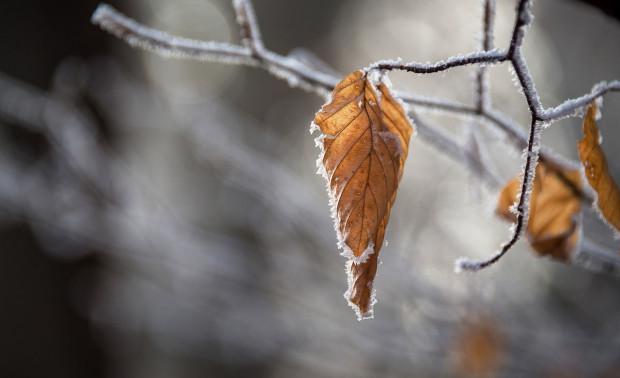 Prognoza pogody na 6 stycznia