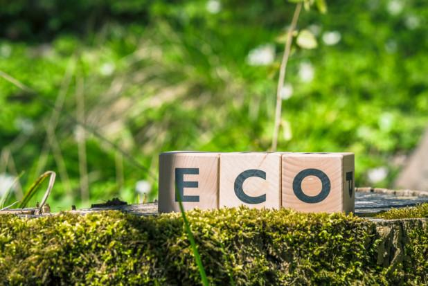 Wzrasta świadomość ekologiczna Polaków