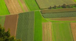 Rząd pozwoli na zakup 5 hektarów ziemi rolnej?