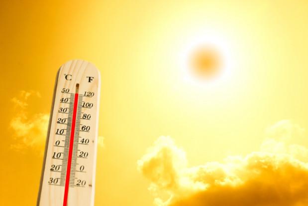 IMGW: Rok 2020 należy uznać za ekstremalnie ciepły