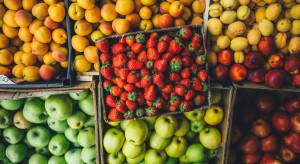 Niemiecki rynek owoców: Pogoda miała znaczący wpływ na zbiory w 2020 r.