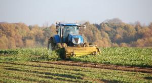 Rząd RP: nie ma źródeł finansowania unijnej strategii dot. bioróżnorodności