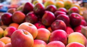 Mały ruch na Broniszach - jakie ceny jabłek?