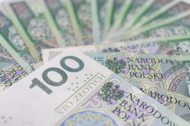 ARiMR: Ruszył nabór wniosków o pożyczkę na spłatę zadłużenia