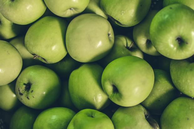 DG AGRI: wielkość polskich zbiorów jabłek mniejsza niż przewidywano