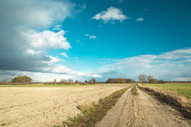 KOWR pobiera dopłaty bezpośrednie na 100 tysięcy hektarów ziemi
