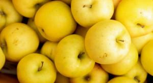 Hiszpania: Kończą się zapasy jabłek w Katalonii