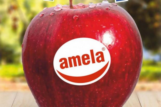 Sadownicy wierzą, że produkcja pod marką Amela zacznie się opłacać