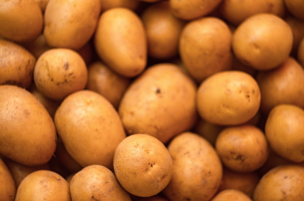 Bułgaria: niemieckie i francuskie ziemniaki sprzedawane jako krajowe