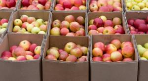 Mołdawia: eksport jabłek w grudniu najniższy od trzech lat