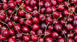 Chiny zniszczyły importowane czereśnie. Wykryto ślady koronawirusa