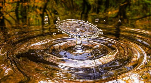 Naukowcy apelują o ochronę wód powierzchniowych