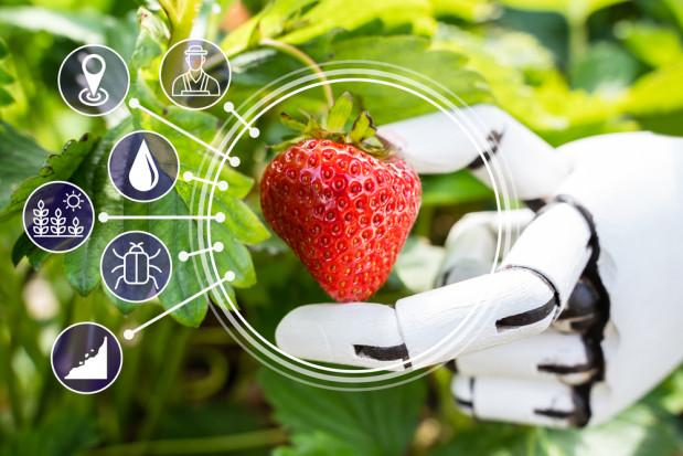 Cogeca: Nowe technologie będą miały większy wpływ na produkcję rolniczą