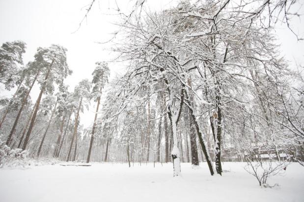 IMGW: intensywne opady śniegu na północnym wschodzie kraju i oblodzenia na południu