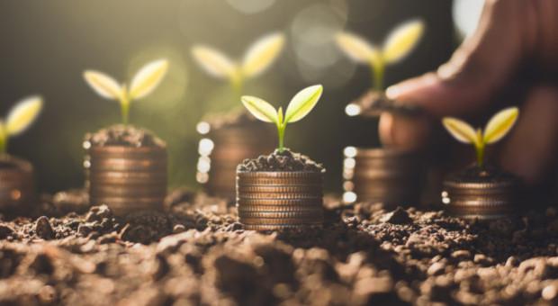 Ubezpieczenia upraw z dopłatą - jakie zmiany w 2021 r.?