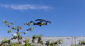 Kubota inwestuje w branżę latających autonomicznych robotów do zbioru owoców