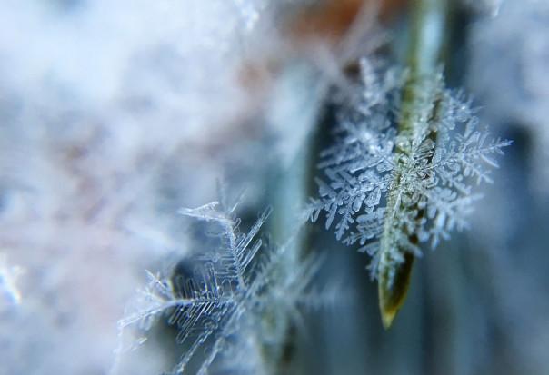 IMGW: w lutym mróz nawet do -30 st. C; mogą być przynajmniej dwa tak zimne okresy