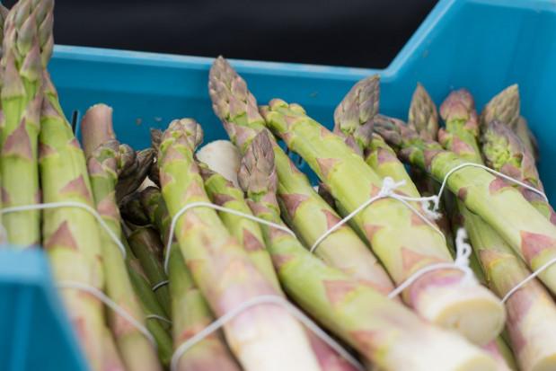 Granada: Zbiory szparagów opóźnione o 20 dni