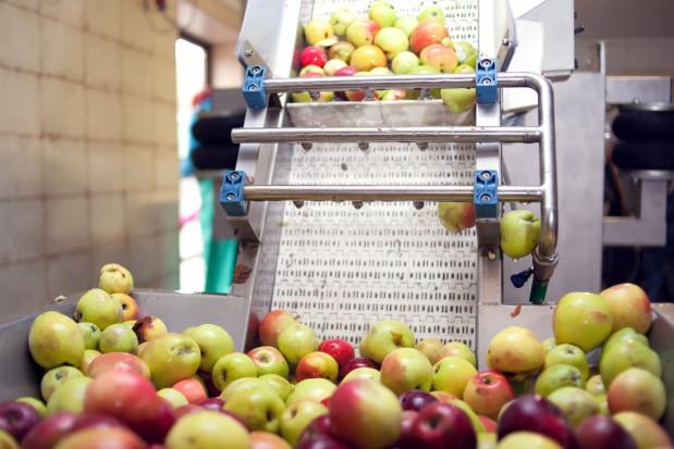 Czy możemy liczyć na wzrost eksportu zagęszczonego soku jabłkowego?