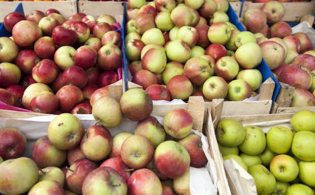 Bronisze: Duża podaż jabłek, nie brakuje kupujących. Jakie ceny?
