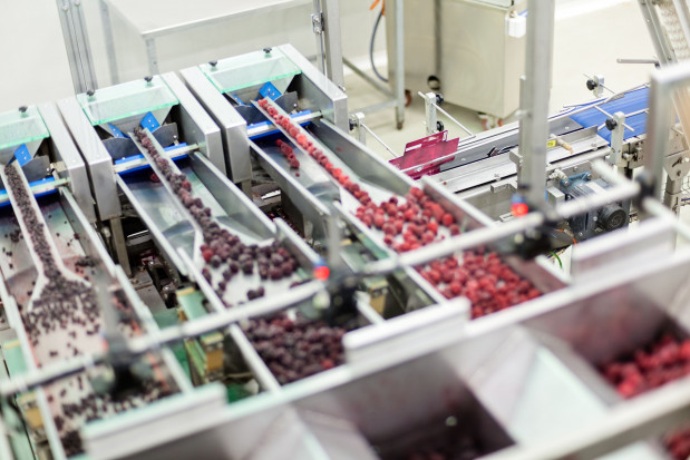 Przetwórstwa owocowo-warzywne - jakie perspektywy na 2021 r.?