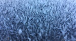 Synoptycy: zima nie odpuści do połowy lutego. Kolejne dni i noce będą mroźne