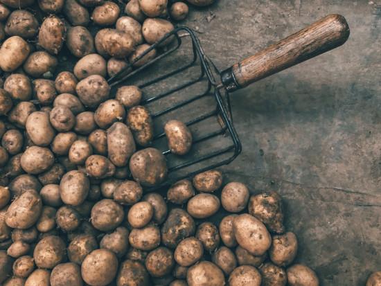 Rosja: ceny ziemniaków nadal rosną