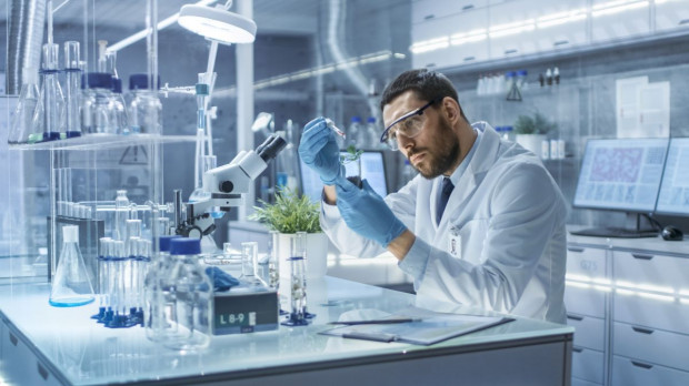 Kanadyjscy naukowcy pracują nad antybiotykami roślinnymi