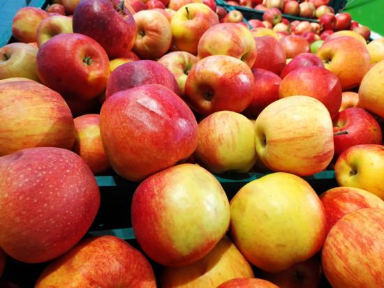Mniejsze zapasy jabłek w Rosji? Mołdawscy eksporterzy liczą na wzrost eksportu