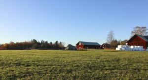 Raport: Duże gospodarstwa bardziej przyjazne środowisku