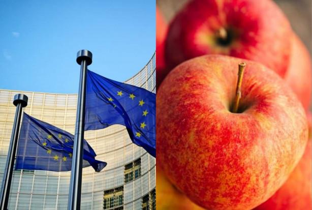 Unia Owocowa: Co Europejczycy myślą o działaniach UE w zakresie rolnictwa?