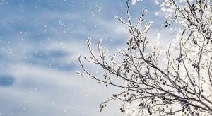 IMGW: Temperatura spadnie nawet do -20 stopni