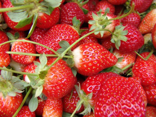 Pierwsze brytyjskie truskawki trafiają na półki supermarketów Aldi