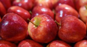 Mniejsze ilości jabłek na włoskim rynku
