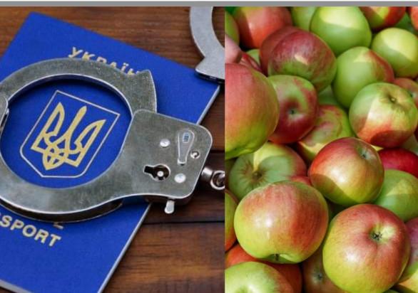 Grójec: Dwóch Ukraińców pracowało nielegalnie w tłoczni soków