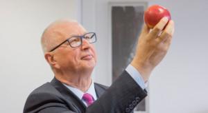 Ewa-Bis: Wytrzymałość jabłka na obrót handlowy jest daleka od oczekiwań
