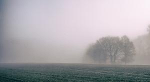 IMGW ostrzega przed gęstą mgłą na północy kraju i roztopami na południu