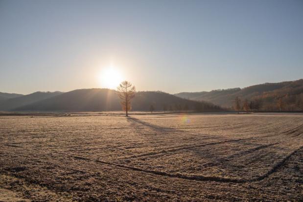 IMGW: rozpoczynający się tydzień pod znakiem ocieplenia