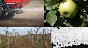 Jakie formy nawozów azotowych dla sadownictwa?