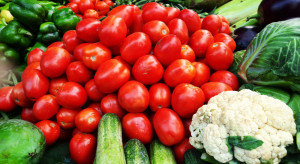 Bronisze: Spadły ceny warzyw z importu i krajowych ogórków spod osłon