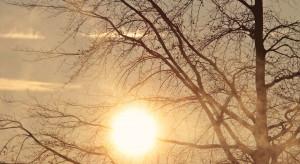 IMGW: w czwartek dużo słońca; miejscami nawet 20 st. C
