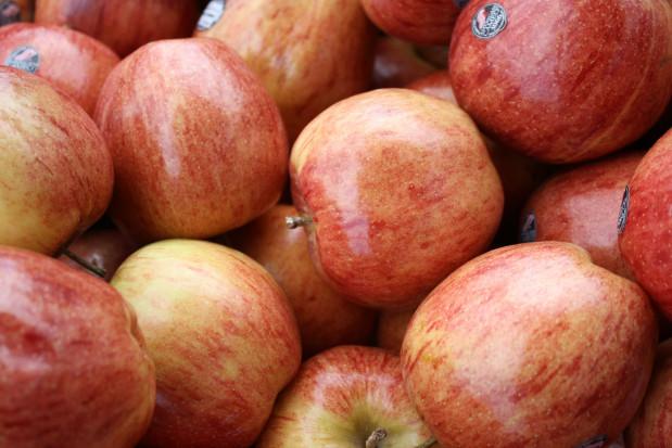 Eksporter: duży popyt na polskie jabłka. Ceny będą rosły