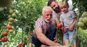 Rodzina i zdrowie priorytetem dla polskich rolników (badanie)
